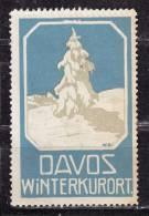 Vignette, Davos Winterkurort (37187) - Erinofilia