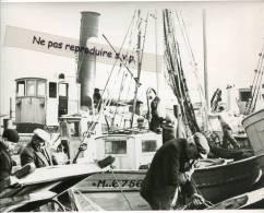 -  MARSEILLE - Grande Photo Ancienne, Remaillage Des Filets Avant Le Départ, Vieux Port, Reproduction, Splendide, TBE. - Reproductions