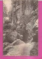 WEHLEN  -   ** DIE TEUFELSCHLÜCHTE  **    -  Verlag :  O. SCHLEICH.aus DRESDEN -  N°496 - Wehlen