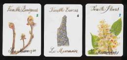 3 Cartes De Jeu /  Le Marronnier  / Arbre Botanique // IM 91/4 - Vieux Papiers