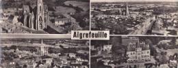 AIGREFEUILLE  - Carte Panoramique - MULTIVUE - L'Eglise , Routes De Nanates Et De St-Sauveur - Chateau Du Plessis - Aigrefeuille-sur-Maine