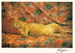 CPSM CHAT PHOTO ELELYNE TESSIER MAHOU DORT COMME UN PACHA 300 EX 1988  AVENTURE CARTOPHILE  EVELYNE A JACQUELINE BOURDIL - Gatti