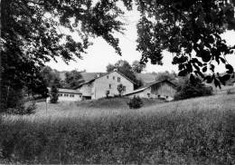 MORILLON LOT 309 - France