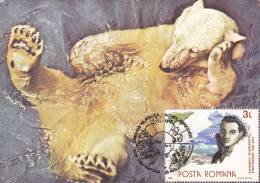 POLAR BEAR,CM,CARTES MAXIMUM,MAXICARD,1990,ROMANIA - Ours
