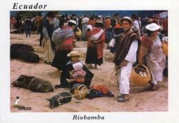 Lote PEP177 Ecuador, Postal, Postcard, Riobamba, Indigenous Activities, Actividades Indigenas - Ecuador