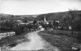 52 - ROOCOURT - VUE GENERALE - TROUPEAU DE VACHES - TIMBRE ABSENT AU VERSO - Sonstige Gemeinden