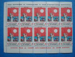 TUBERCULOSE . ANTITUBERCULEUX . 1927/28 . BLOC DE  10 ** - Erinofilia