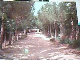 VELLETRI - FONTE ANTIURICA DI S. MARIA DELL'ORTO (ROMA) VB1972 EA8809 - Velletri