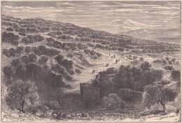 PALESTINE. Plaine De Génézareth. 1892 - Vieux Papiers