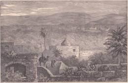 PALESTINE. Jardins De Jaffa. 1892 - Vieux Papiers