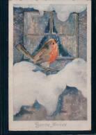 Bonne Année, Neige Et Oiseau Par Illustrateur Litho (10028) - Other Illustrators