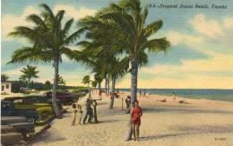 CPA - Tropical Dania Beach, FLORIDA - 636 - Palm Beach