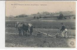 SCENES CHAMPETRES  DU CENTRE DE LA FRANCE - Laboureur - Frankrijk