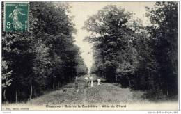 10-CHAOURCE-Bois De La Cordelière-Allée Du Chalet-animée - Chaource