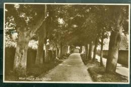 West  Walks Dorchester Ug76 - Angleterre