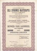 NEDERLAND  --  DELI  SPOORWEG - MATSCHAPPIJ  -  RAILWAY COMPANY - Ohne Zuordnung
