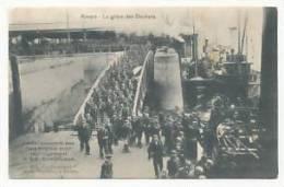 Belgique. Anvers. La Grève Des Dockers. Embarquement Des Rats Anglais Pour Leur Logement, Le S.S Cambroman. 1907 - Grèves