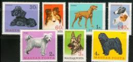 HUNGARY - 1967.Hungarian Dogs Cpl.Set MNH! - Ungheria
