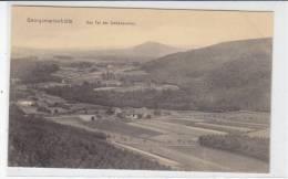 Georgsmarienhütte - Das Tal Der Siebenquellen -- Um 1910 - Georgsmarienhütte