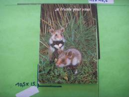 8) Animaux : Humour : Campagnoles ! : Je Tricote .................. - Animaux & Faune
