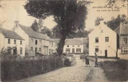 Carte Postale Hamme Mille Beauvechain Un Coin Du Village - Beauvechain