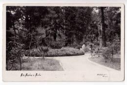 EUROPE MONTENERGRO TIVAT TEODO A PART OF THE PARK OLD POSTCARD 1928. - Montenegro