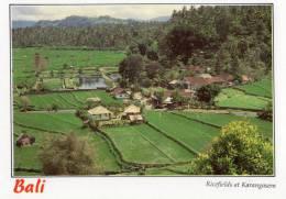 Ricefields At Karangasem, Bali - Sujana AC 155 Unused - Indonesia