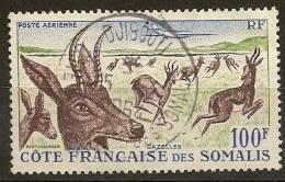 Côte Des Somalis - N° PA  26  Gazelles Et Avion - Costa Francese Dei Somali (1894-1967)