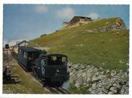 Schafberg - Bahn ( Österreich - Austria - Autriche ) - Chemins De Fer