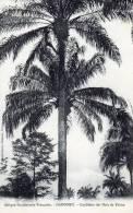 DAHOMEY Cueillette Des Noix De Palme - Dahomey