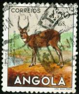 ANGOLA, 1953, FAUNA, ANIMALI, ANTILOPI, FRANCOBOLLO USATO, YT 364,   Scott 369 - Angola