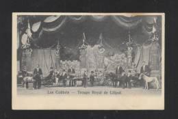 Les Colibris Troupe Royal De Liliput - Circus
