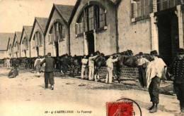Cavalerie 14 - 4e D'artillerie, Le Pansage - Militaria