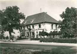 Gertwiller  Restaurant Chez Fortwenger Specialités:Pain D'épices-Vins Fins 1ere Qualité-Plats Froids  Cpsm Format 10-15 - Francia