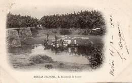 Soudan Français, La Bananerie De Sikasso - Soudan