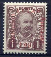 "MONTENEGRO 1905 Constitution Overprint Error ""Coustitution"" On 1k..  MH / * - Montenegro"