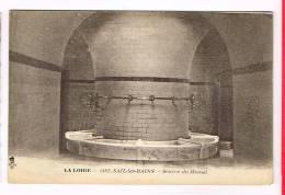 SAIL-LES-BAINS ( Loire )  Source Du Hamel - France