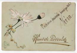 EASTER FLOWERS RELIEF SR Nr. 81 OLD POSTCARD 1899. - Holidays & Celebrations