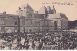 ¤¤  -    COULONGES-sur-L'AUTIZE   -   Le Chateau Façade Nord  -  Marché Aux Bestiaux , Vaches , Boeufs   -  ¤¤ - Coulonges-sur-l'Autize