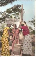 L'AFRIQUE EN COULEURS .. PILEUSES DE MIL - Französisch-Guinea