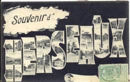 HERSEAUX 1905  SOUVENIR D' HERSEAUX - Moeskroen