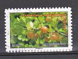 """FRANCE / 2012 / Y&T N° AA 691 : """"Fruits"""" Lettre Verte (Groseilles à Maquereaux) - Usuel - France"""