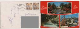 Cart551 San Benedetto Del Tronto, Vedute, Faro, Lingomare, Porto Pescatori, Barche, Vintage, Palme, Fiori - Ascoli Piceno