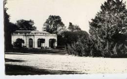 77 -CHAMPS-sur-MARNE-cpsm- Le Chateau-,Orangerie-Cyprès De Bossuet - Frankreich