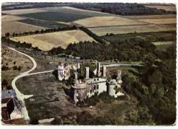 Cpsm  Du 29 En  Cleder  Les Ruines De Kergounadeac'h  Vue Aérienne      BHU20 - Cléder