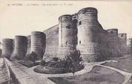 France Angers Le Chateau Vue d'ensemble