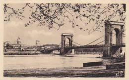 France Avignon Le Pont Suspendu sur le Grand Rhone