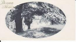 Bonne Année,  Ancienne Mignonnnette, Arbre, Forêt, Neige