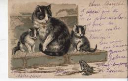 Chats Et Grenouille - Chats