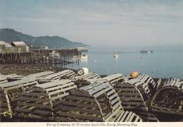 Ferry Crossing At Tiverton In Morning Fog, Lobster Traps, Long Island, Digby Neck, Nova Scotia, Canada, 50-70's - Autres